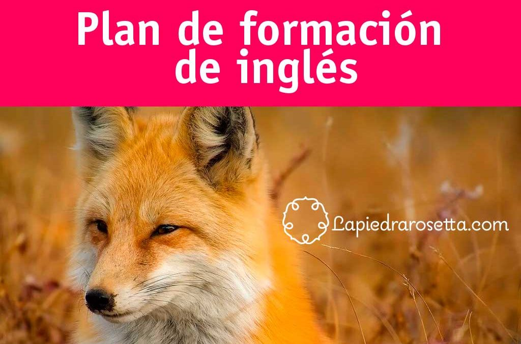 plan de formación en inglés